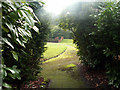 SP0480 : Peeking through the shrubbery into the Girls' Recreation Ground, Bournville by Phil Champion