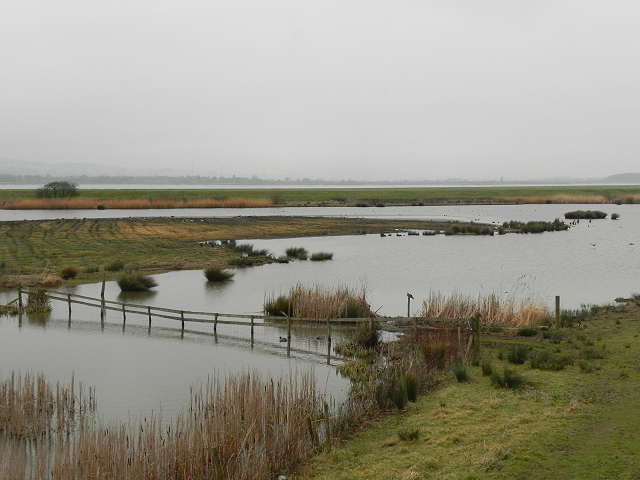 View from the Zeiss Hide at Slimbridge