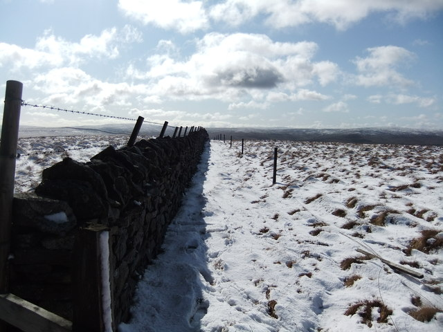 Wall on Sedling Fell