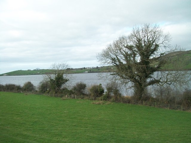 The south-eastern shore of Lough Island Reavy