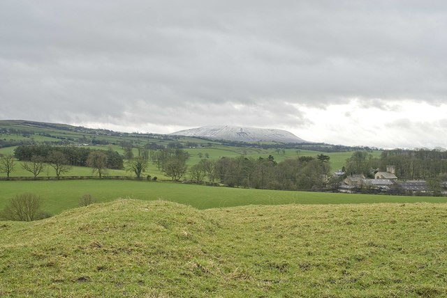Earthwork on the hill above Bracewell