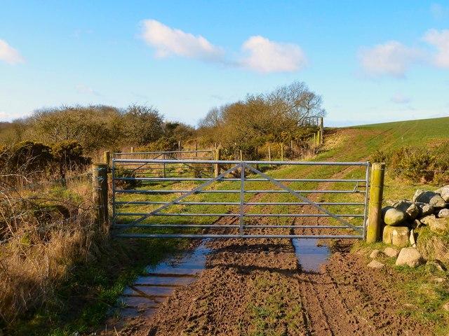Track to Dowalton Loch