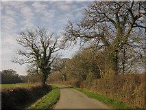 SX3387 : Lane to Werrington by Derek Harper