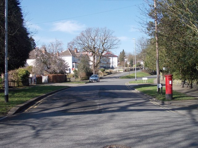 Weetwood Avenue - viewed from Hollin Lane