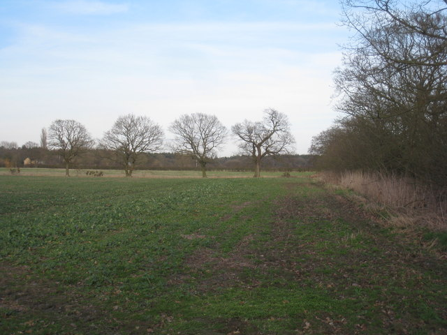 View towards Highfield Farm