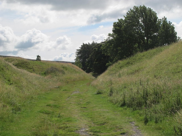 Trackbed of the former mineral railway between Ashes Quarry and Crawleyside (5)
