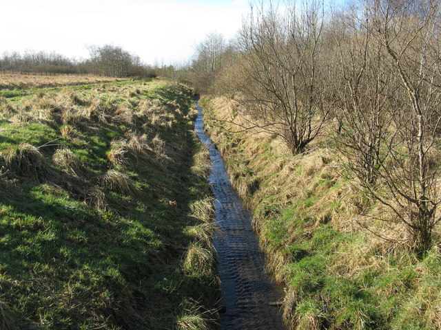 Drain at Nether Williamson