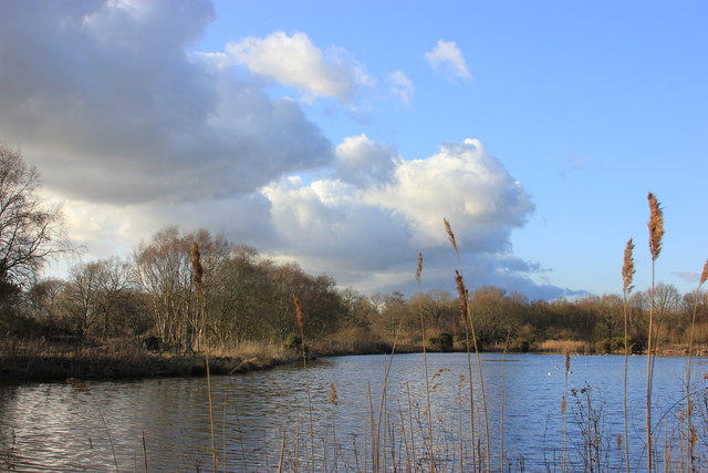Black Lake, Lindow Common, Wilmslow