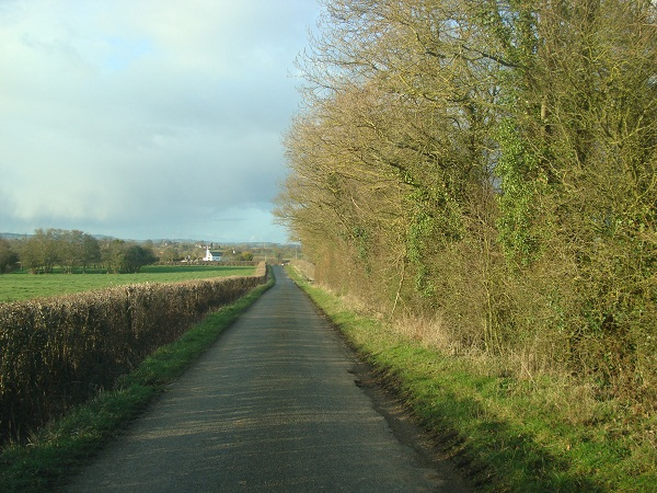 Lane at Woodgate