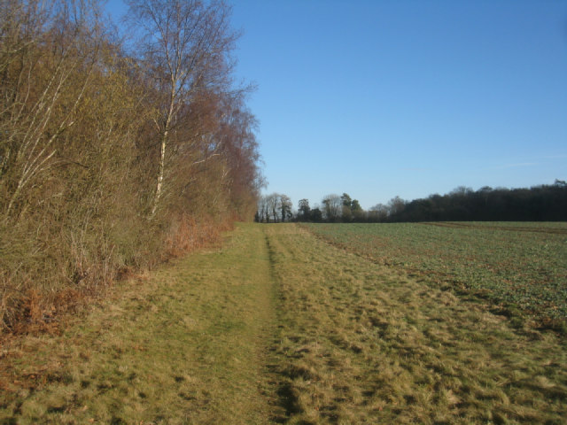 Northern edge of St John's Field