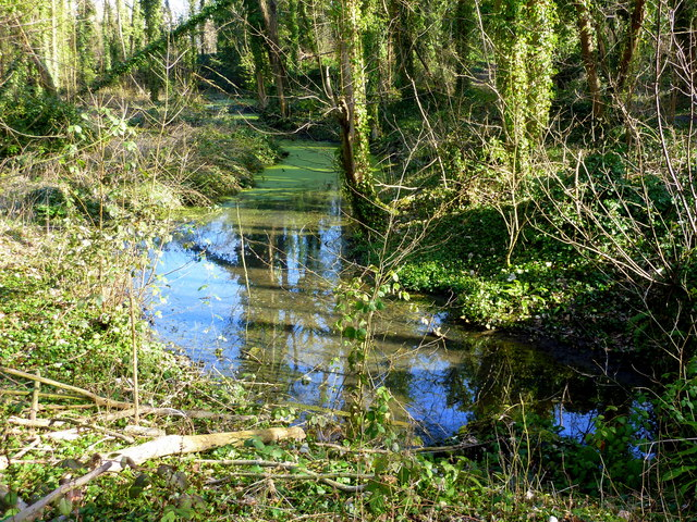 The leats in Oare Gunpowder Works Country Park