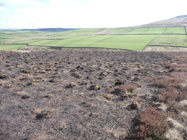 Burnt moorland and enclosed fields