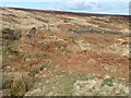 SE0806 : Footpath ford at the top of Hey Clough, Stopes Moor by Christine Johnstone