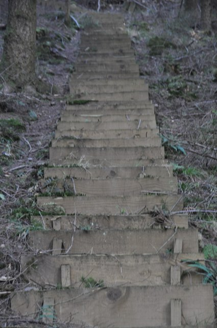 Mid Devon : Hillside Steps