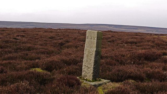 Boundary stone on Wet Slack Ridge
