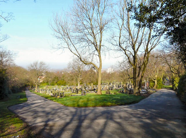 View over Hyde Cemetery