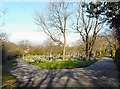 SJ9593 : View over Hyde Cemetery by Gerald England