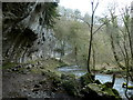 SK1273 : Crags looming over the River Wye in Chee Dale by Andrew Hill