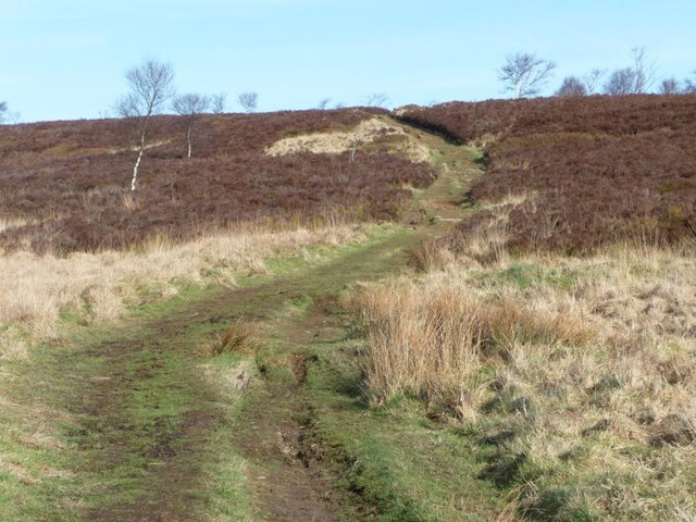 'The waymarked public footpath across the moorland'