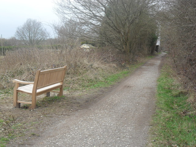 Memorial Seating on Forest Way