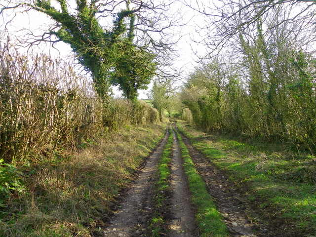 Holcombe Lane