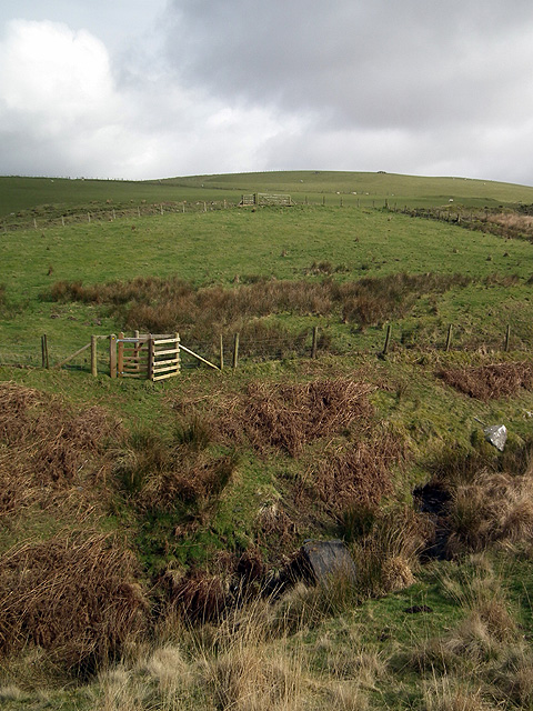Gate and footbridge across Nant Lwyd