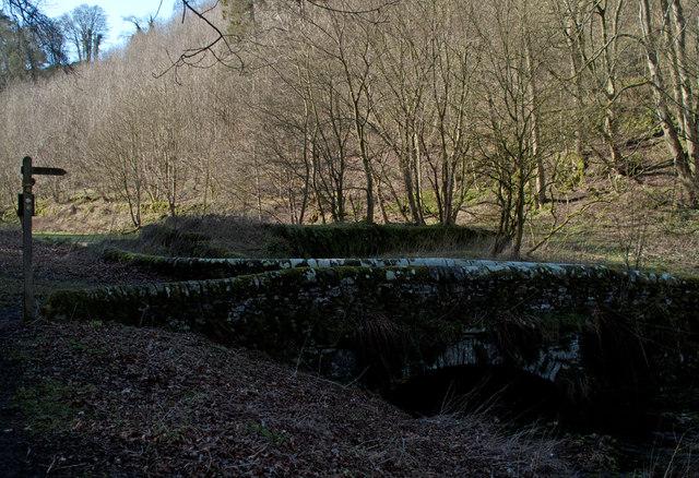 Bridge with woodland