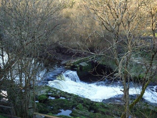River Carrron, Larbert Weir (Ruin) [4]