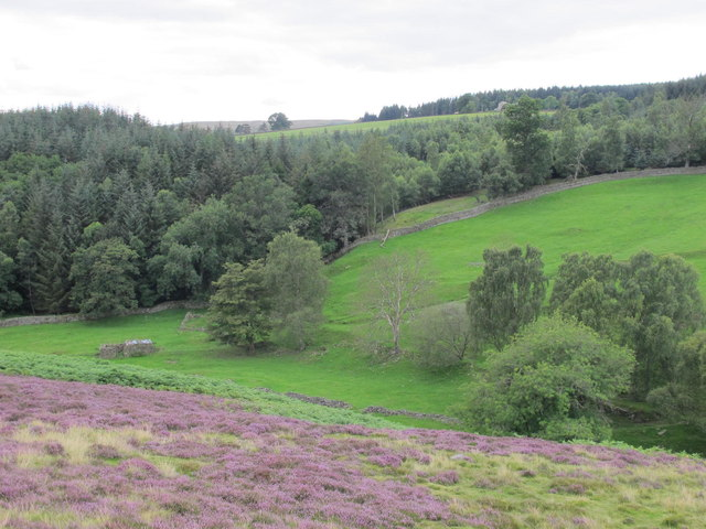 The valley of Stanhope Burn below Hope House