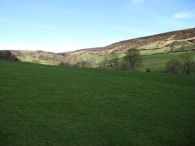 Near the Head of Northdale
