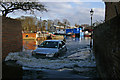 TQ1673 : Spring tide, Eel Pie Island, Twickenham : Week 11
