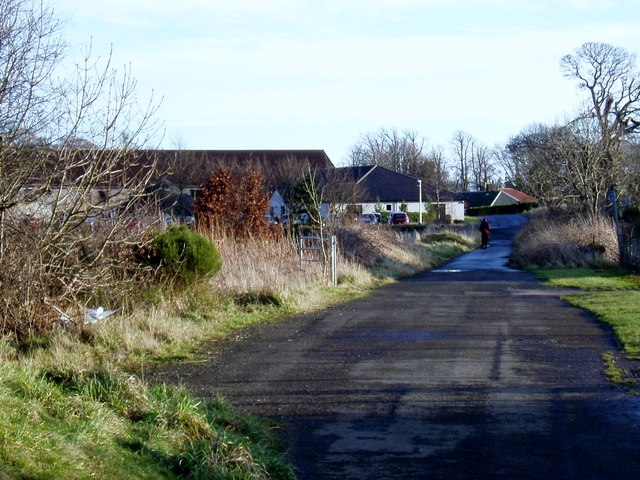 Old road at South Grange