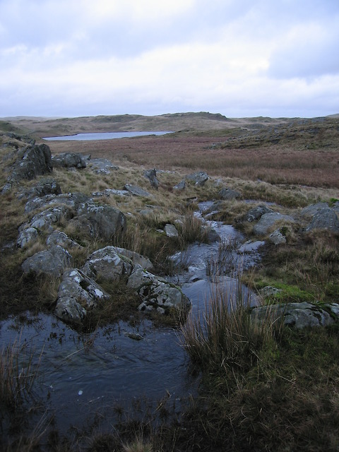 Overflow from Llyn Hir