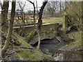 SD7907 : Bridge Over Bealey's Goit, Close Park by David Dixon