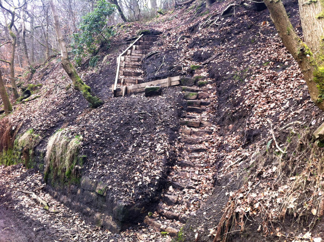 Newly installed steps on a footpath off Colden Road, Mytholm