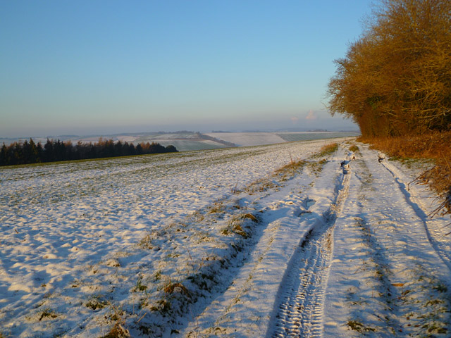 Track and farmland,  East Garston