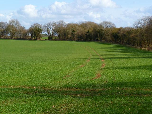 Farmland, Kintbury