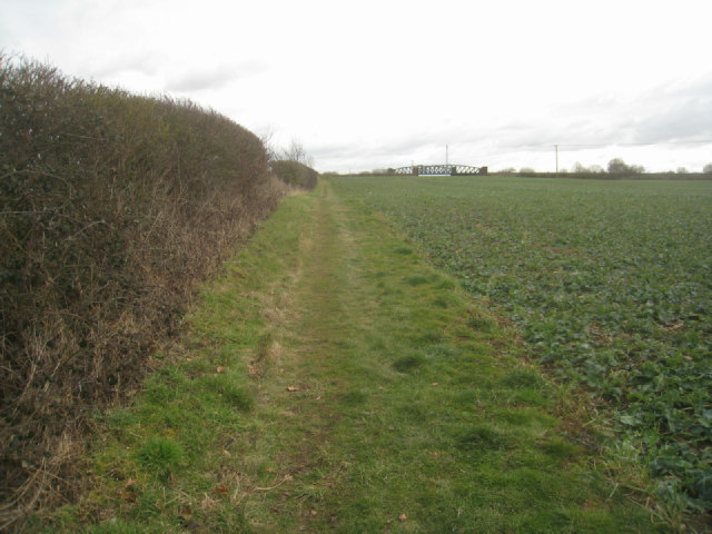 Field boundary - Pack Lane