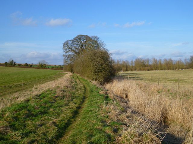 Farmland and bridleway, Brown Candover