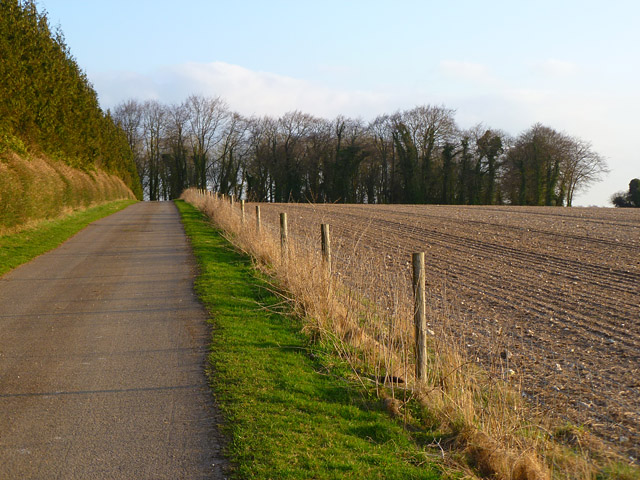 Farmland, track and woodland, Brown Candover