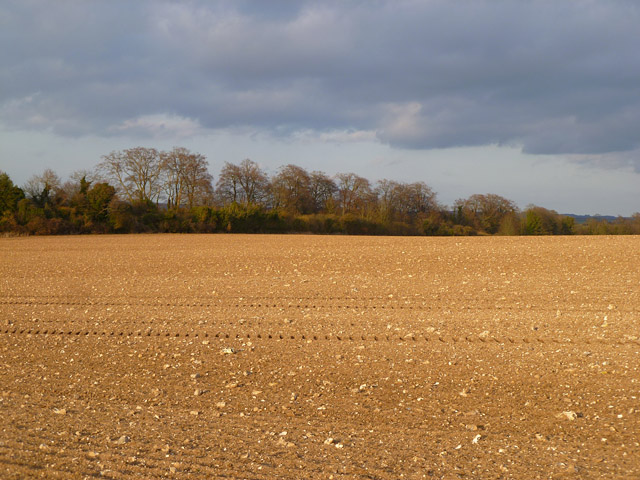 Farmland, Brown Candover