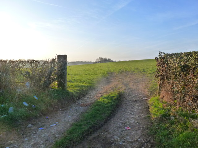 Field entrance, Llanfihangel Rogiet