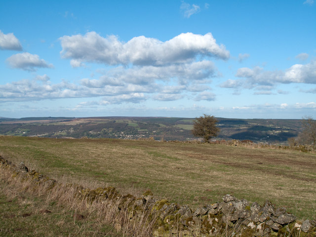 Field with Derwent valley beyond