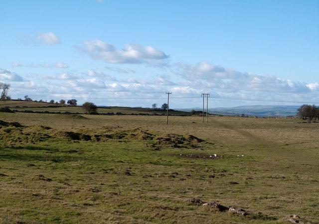 Limestone Way crossing field