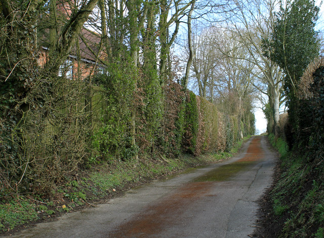 2012 : Byway to Heathy Close