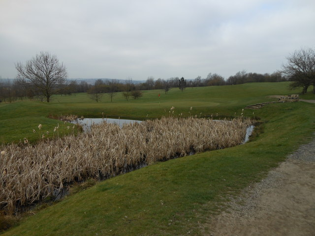 pond adjacent 12th green Rother Valley G.C.