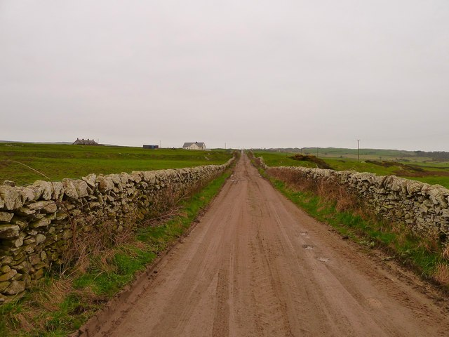 Track to Craigdhu