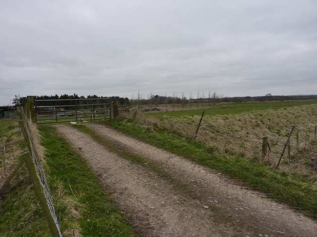The track over the flood embankment