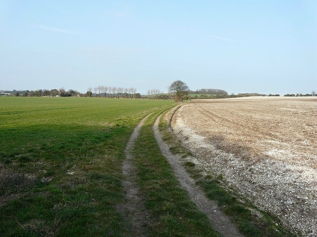 Bridleway northeast of Free Down Wood