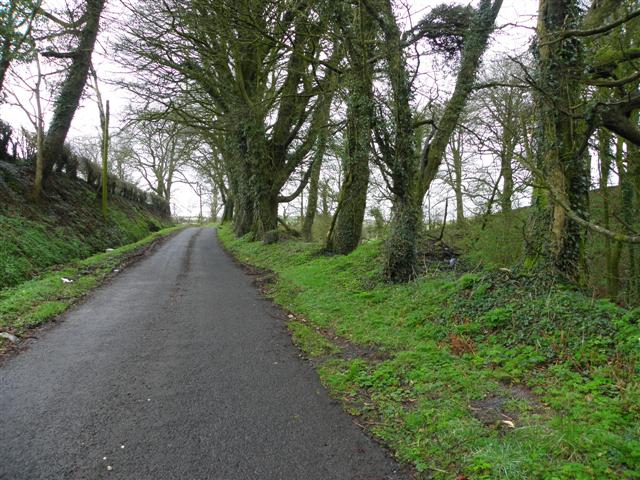 Road at Shantonagh
